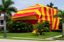 Tent fumigation for termite control