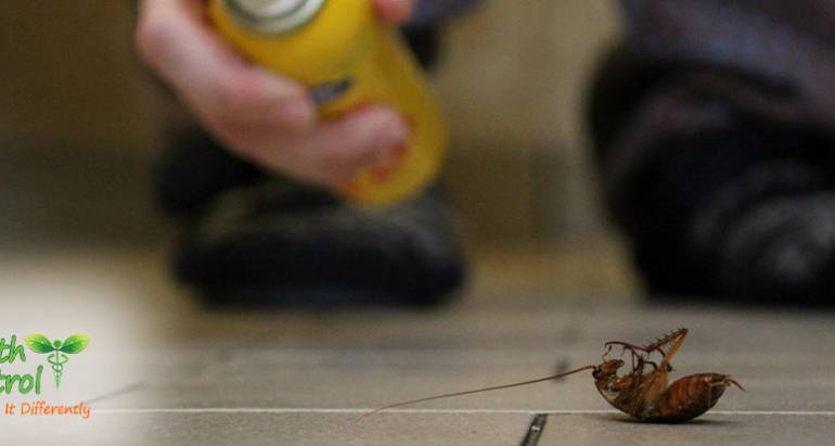 Why Commercial Pest Control is so Important for your Property