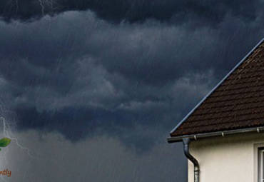 Why Preventative Pest Control is Important During Hurricane Season