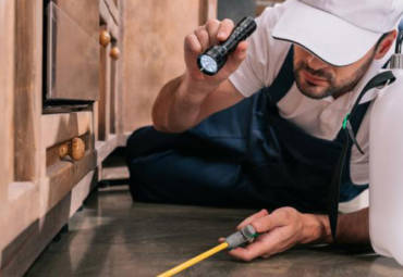 Why You Should Schedule a Pest Control Inspection Before Property Renovations