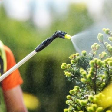 6 Major Benefits of Green Pest Control for Your Office Building