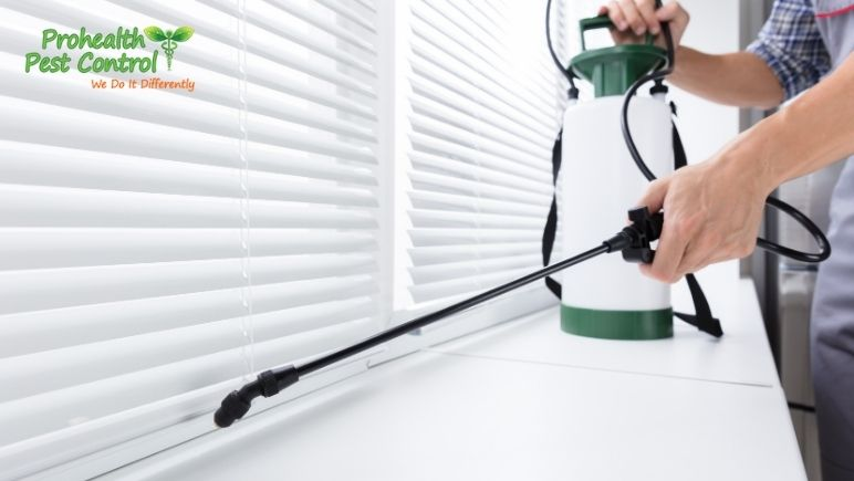 ProHealth is Your Best Choice for Pest Control for Business