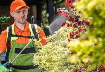 Natural Pesticides for Plants: Protect Your Garden from Pests!