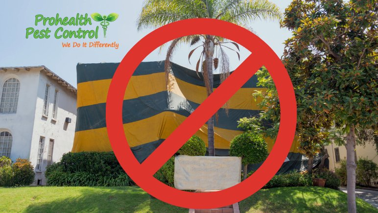 Why No Tent Termite Treatment is a Great Option for Commercial Properties